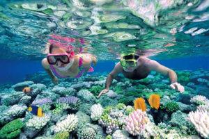 Lặn san hô